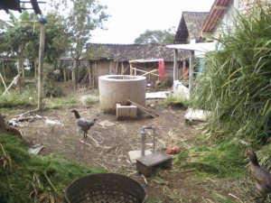 Mengubah Limbah Kotoran Ternak Menjadi Gas..teknologi Biogas