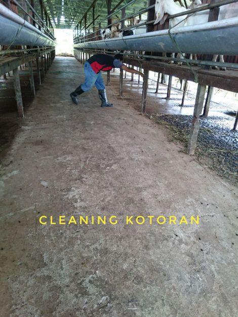 Kebersihan Kotoran