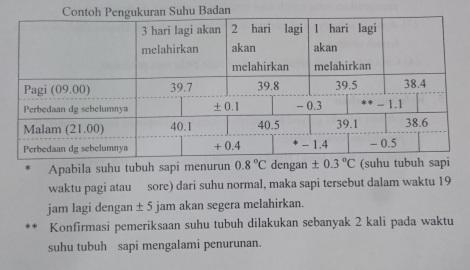 Tabel pengukuran suhu sapi estimasi lahir