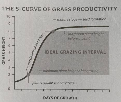 Produktivitas Rumput